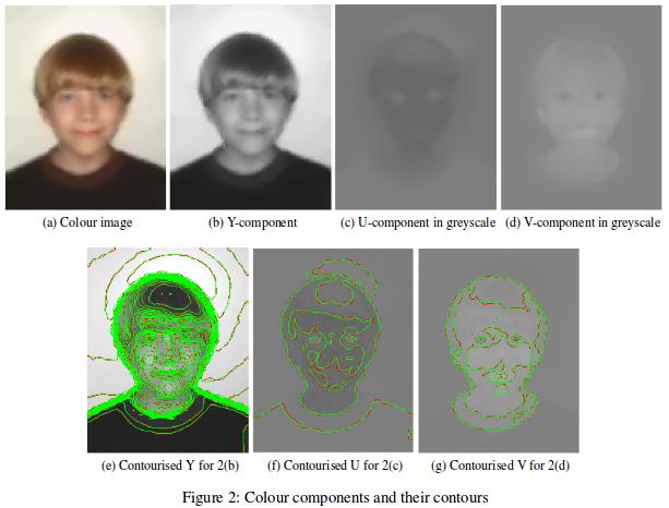 images/vectorised-visage.png