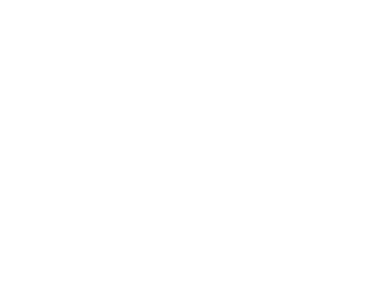 communication/logos/Mech2_partnerlogo_white.png