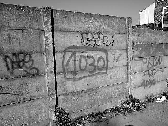 langue_schaerbeekoise_photos gray selec/grszsh-9.jpg