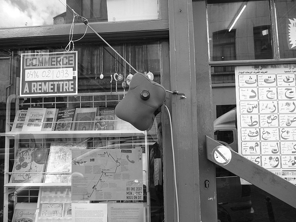 langue_schaerbeekoise_photos gray/grszsh-29.jpg