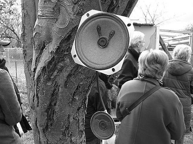langue_schaerbeekoise_photos gray/grszsh-5.jpg