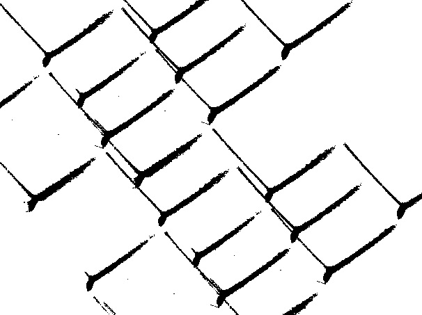 img/texturas/DSC_8077.JPG