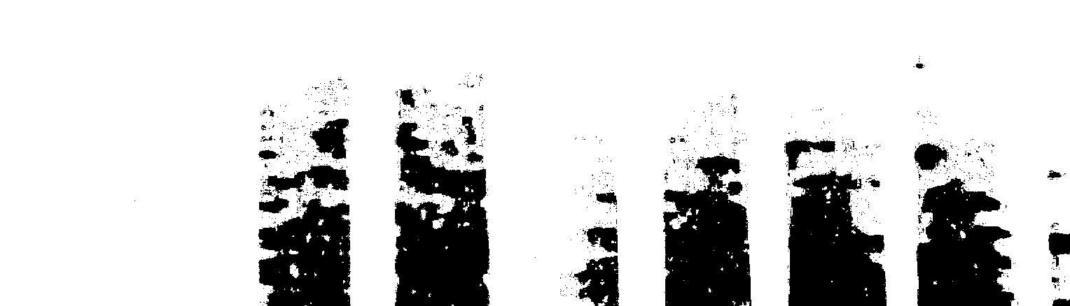 img/texturas/DSC_8029.JPG