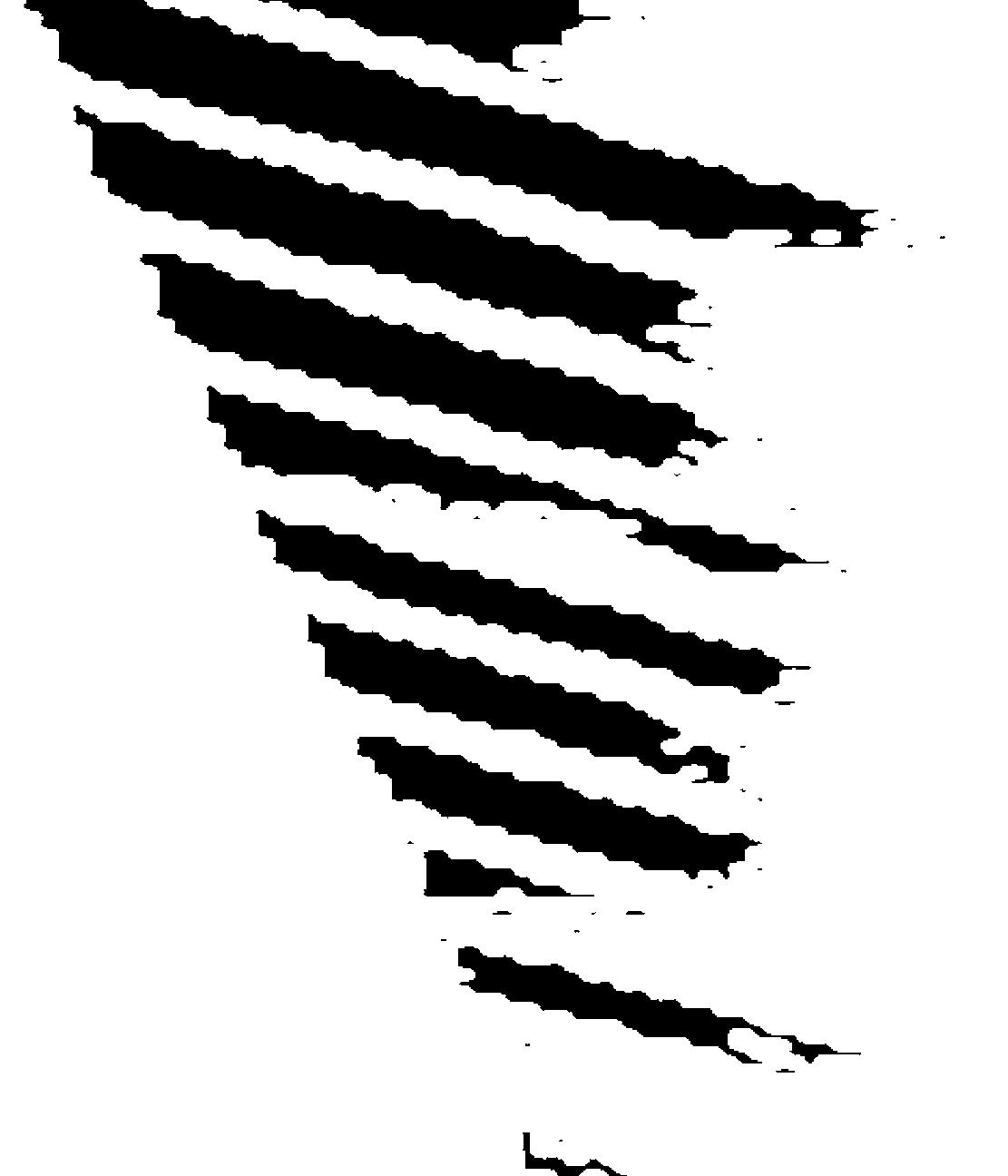 img/texturas/DSC_8061.JPG